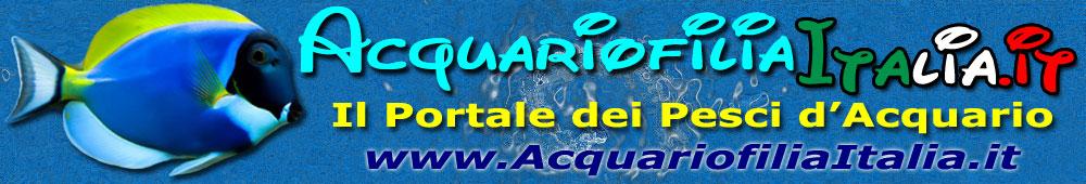 Acquariofilia